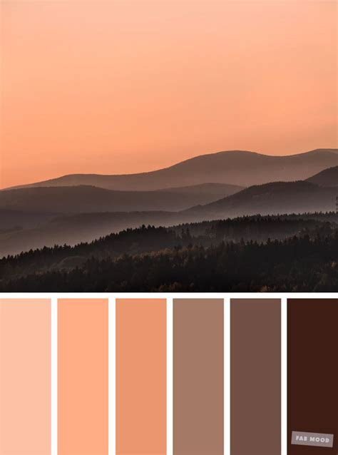 Brown chocolate and peach color combination,peach color