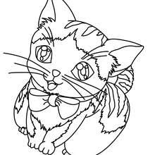 funny cat coloring pages at getcolorings  free