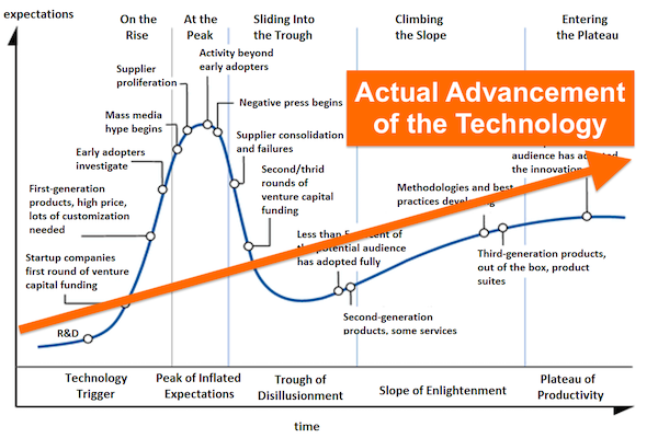 Reality Underlying Gartner's Hype Cycle
