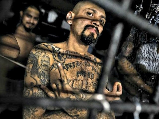 MS-13 gang memberr
