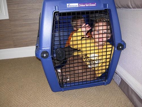 kids in a crate 3