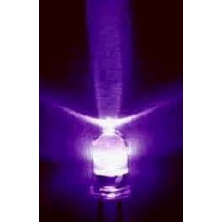 Luz Negra - www.pedroamoros.com-