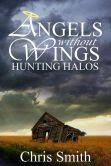 Hunting Halos