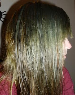 Langhaarnetzwerk Thema Anzeigen Haare Mit Henna Grün Färben