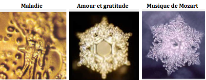http://www.ressenti-sonore-et-vibratoire.com/attachments/Image/emoto.png?template=generic