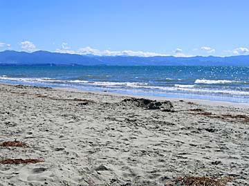 [tahunanui beach]