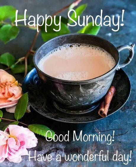 Wonderful Happy Sunday Good Morning Image Pictures Photos And