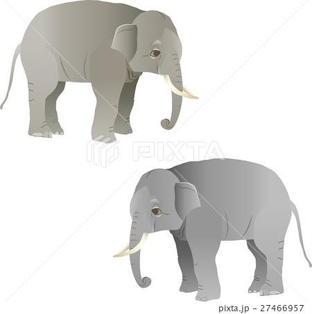 象ぞうのイラスト Skys Co Ltd