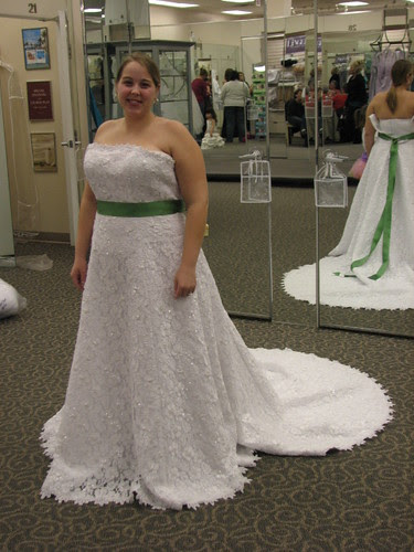 Ambers Wedding Dress - 2-13-11 010