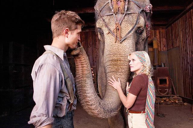 ent-110421-movies-elephantsjpg-a06fccf708876d1a