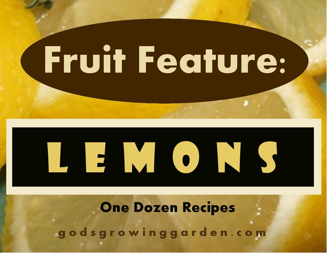 by Angie Ouellette-Tower for http://www.godsgrowinggarden.com/ photo FruitLemon_zpsbtpbwiz0.jpg