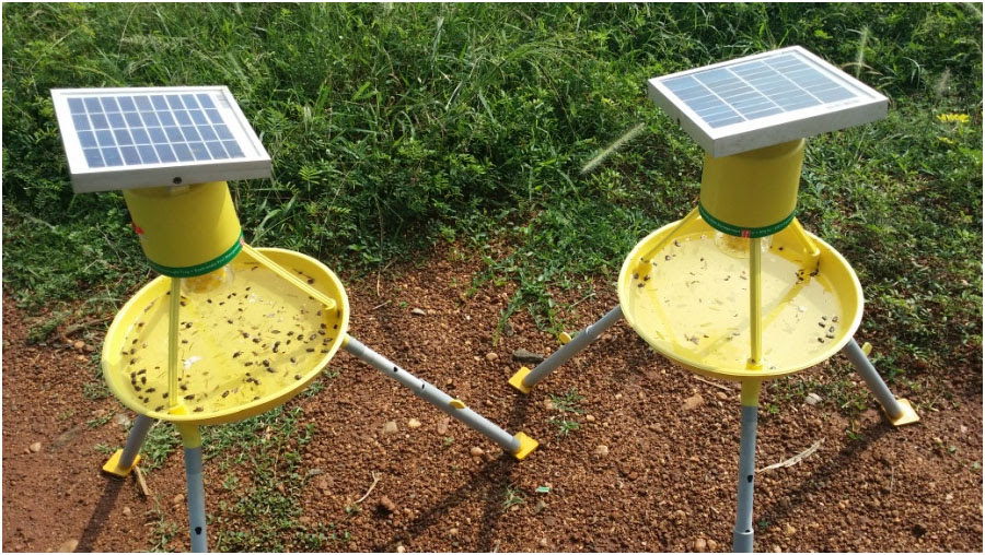 Solar Powered Insect Trapper