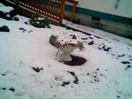 J2 snow