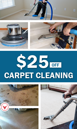 save money and clean your carpet