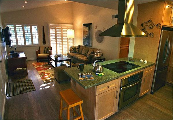 How to Decorate Kitchen Combined with Living Room?