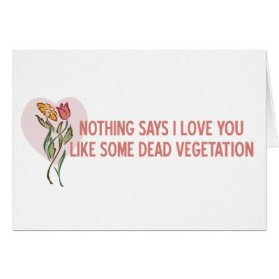 Nothing Says I Love You... - Funny Anti-Valentine's Day Card