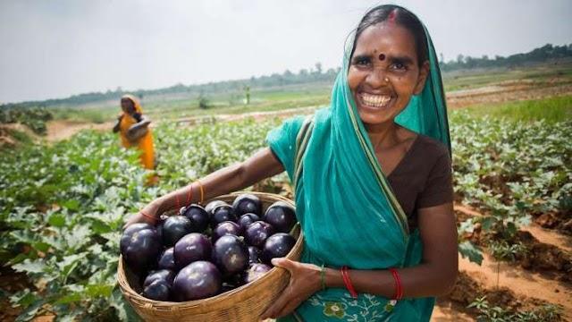 किसानों के लिए खुशखबरी, अब फल-सब्जियों के लिए भी मिलेगा न्यूनतम समर्थन मूल्य
