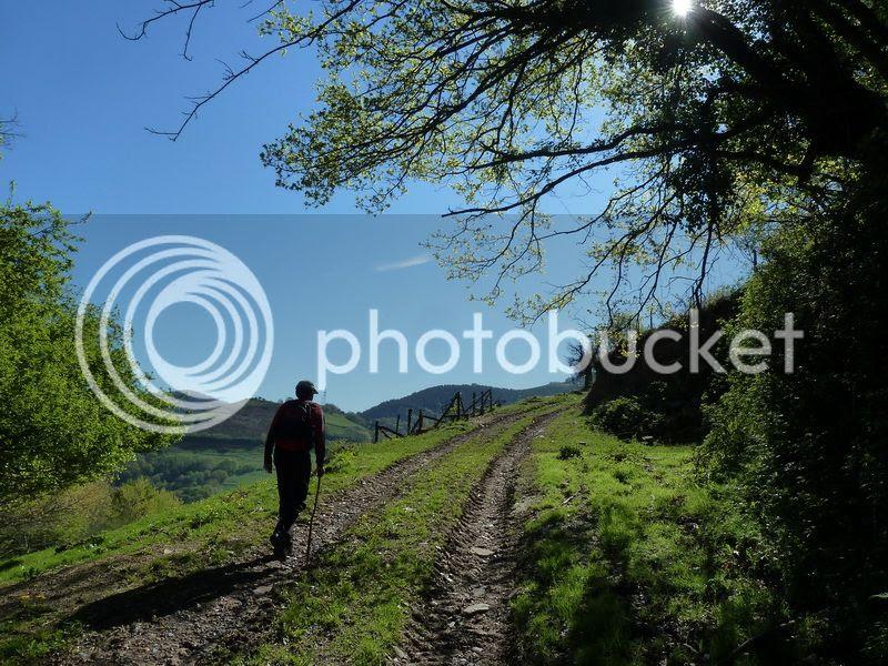 photo P1110190_resize.jpg
