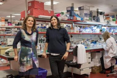 <p>Paula Martínez (izq.) y Maria A. Blasco (drcha.), principales autoras del trabajo. / CNIO</p>