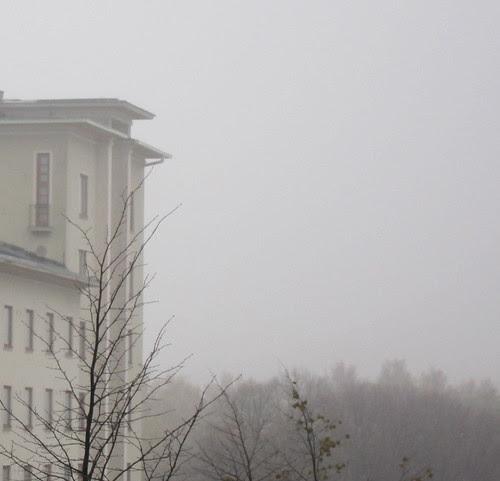 fog by Anna Amnell
