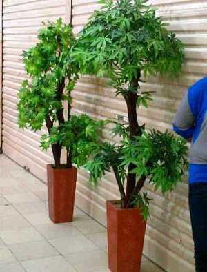 Cari pohon artifisial imitasi tanaman hias pohon plastik