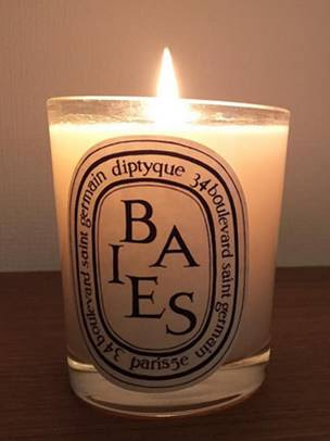 Diptyque Baies Scented Candle Reviews - Candle Frenzy