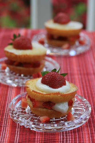 Food Librarian - Mini Yogurt Cake and Strawberries