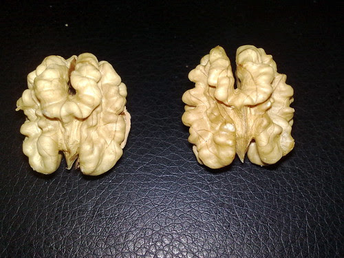 Two Walnuts or Twin Brains by Tis Art