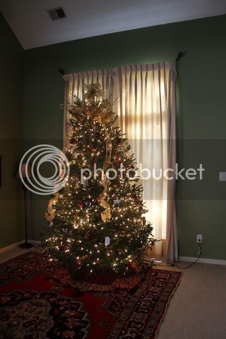 photo tree23_zps8e554f42.jpg