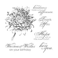 Blooming With Kindness Clear Stamp Set