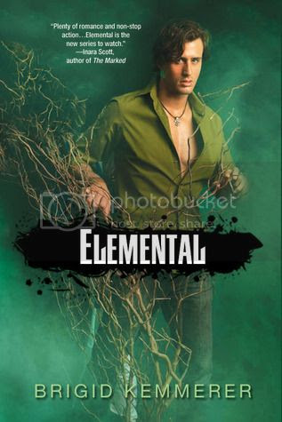 elemental by brigid kemmerer