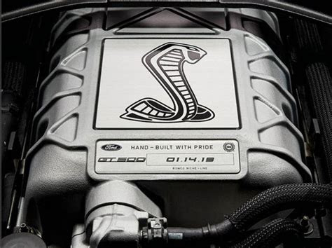ford mustang shelby gt  house   printed