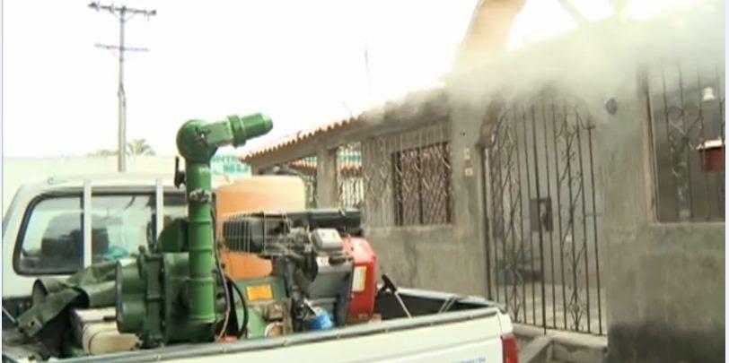 Incrementan fumigación contra el mosquito transmisor del dengue y chikunguña