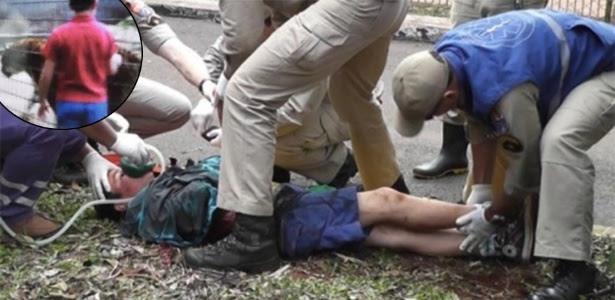 Menino atacado por tigre em zoológico teve o braço amputado na altura do ombro