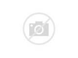 Photos of Black Bean Burger Vegan