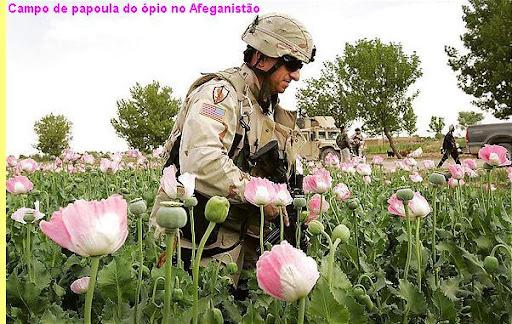 Resultado de imagem para soldado eua plantação papoula afeganistão