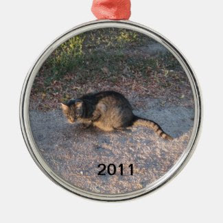 Put Your Pet on the Tree with an Ornament