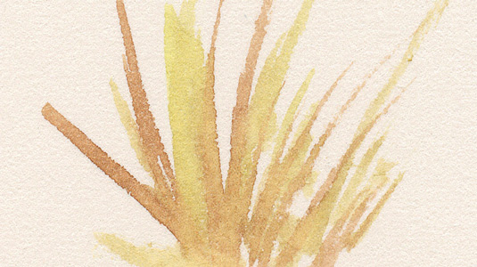 watercolor-projects-8