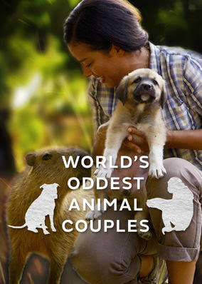 World's Oddest Animal Couples US - Season 1