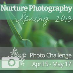 Nurture Photography Challenge - Spring 2013 Edition