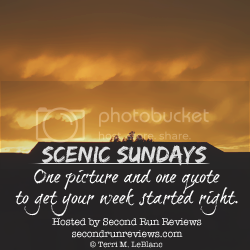 Second Run Reviews Scenic Sunday