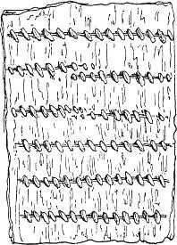 figure 109