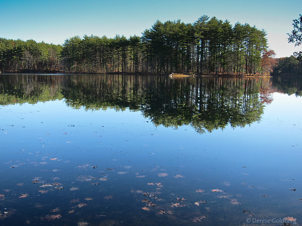 clear blue skies, reflection