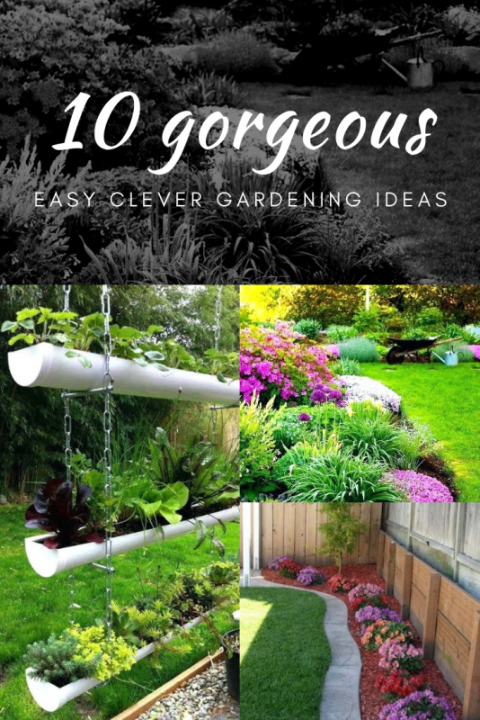 Garden Ideas On A Budget Gardening Decoration Trends For Your Home
