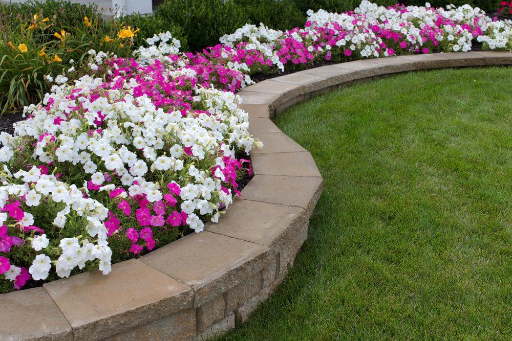101 Front Yard Garden Ideas (Awesome PHOTOS)