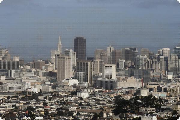 Beautiful-San-Francisco-View
