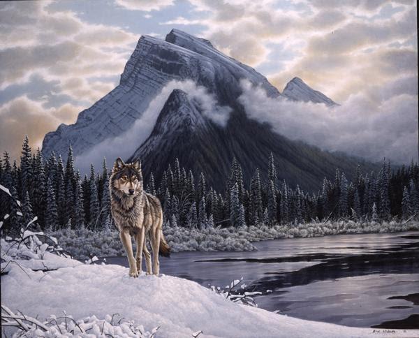 Caballero De La Palabra Lobo Solitario