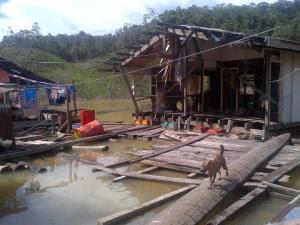 Sarawak poverty