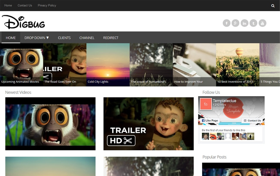 Digbug - Responsive Video Blogger Template