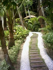 Forest-style pathway.